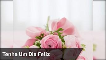Vídeo De Bom Dia Tenha Um Dia Feliz Para Compartilhar No Facebook!
