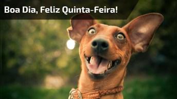 Vídeo De Mensagem De Boa Dia Quinta-Feira! Deus Abençoe Seu Dia!