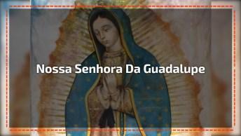 12 De Dezembro É Dia De Nossa Senhora Da Guadalupe, Padroeira De Toda A América!