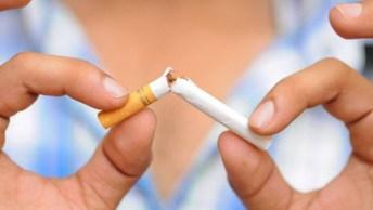 31 De Maio É Dia Mundial De Luta Contra O Tabaco, Vamos Lutar Contra Esse Mal!