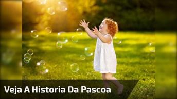 A História Da Pascoa Da Páscoa Contada Na Voz De Crianças, Ficou Lindo!