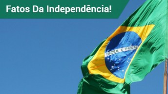 Curiosidades Sobre A Independência Do Brasil!
