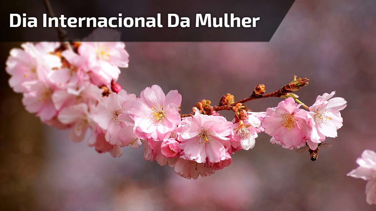 Dia 08 de Março, dia internacional da mulher, uma data muito especial!
