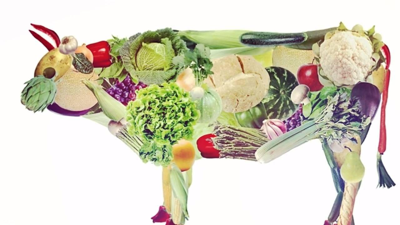 Dia 1 de Novembro é dia Mundial do Veganismo