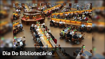 Dia 12 De Março É Dia Do Bibliotecário, Parabéns A Todos Bibliotecários!