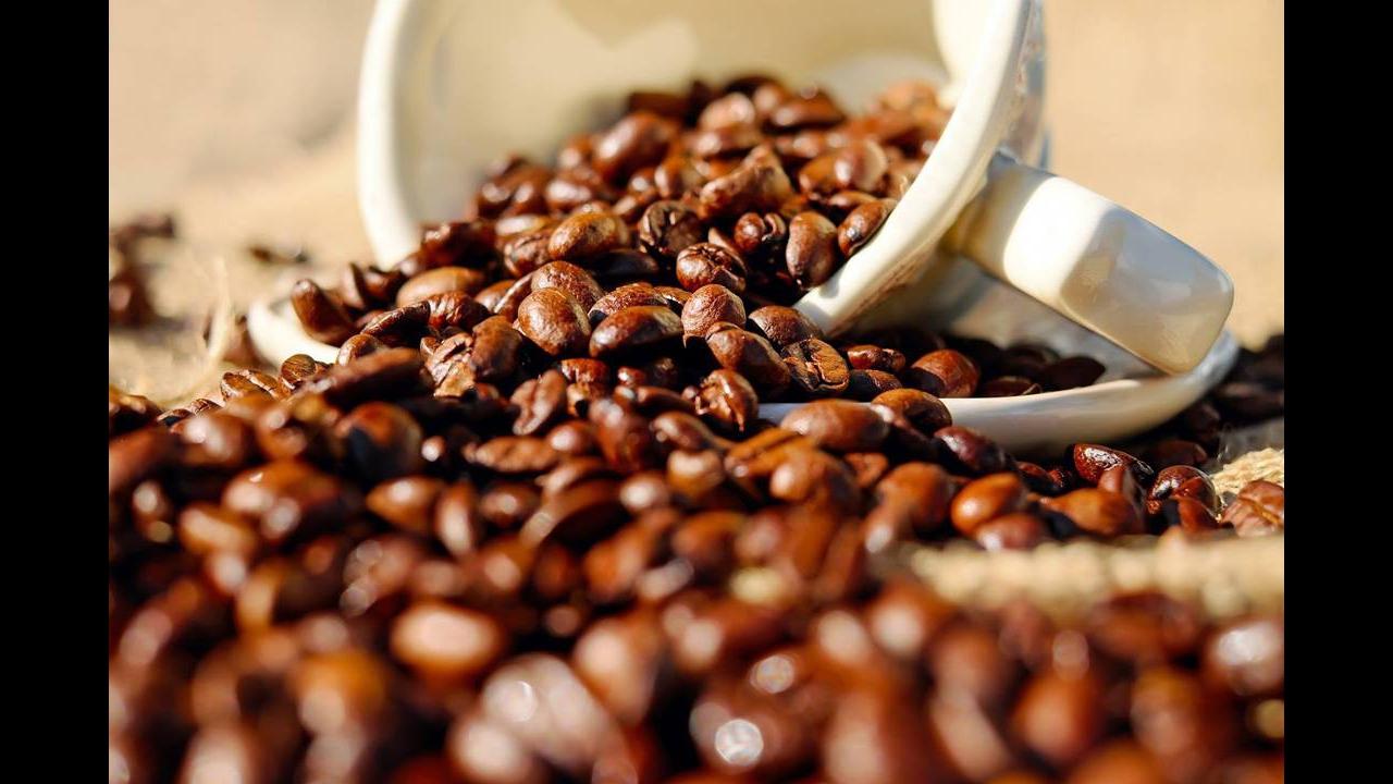 Dia 14 de Abril é Dia Mundial do Café