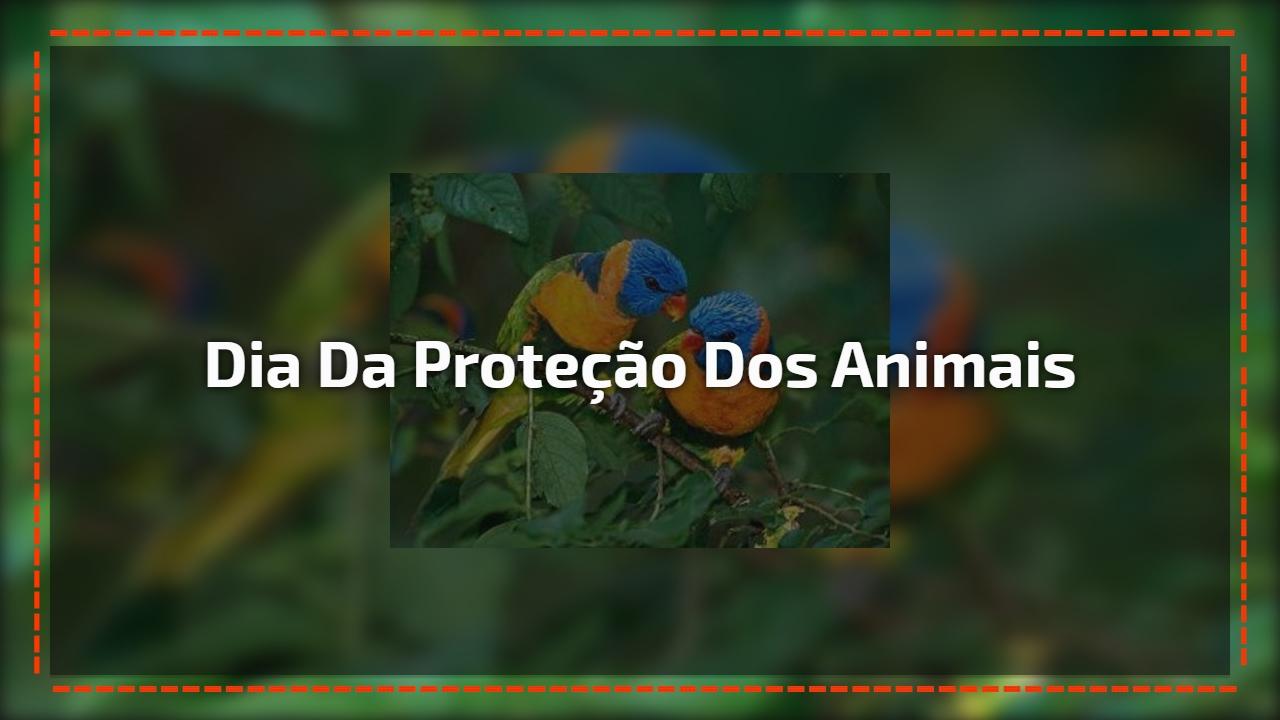 Dia da Proteção dos animais