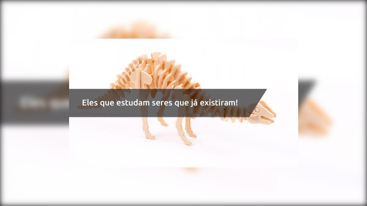 Dia 15 de Junho é Dia do Paleontólogo - Eles que estudam seres que já existiram!