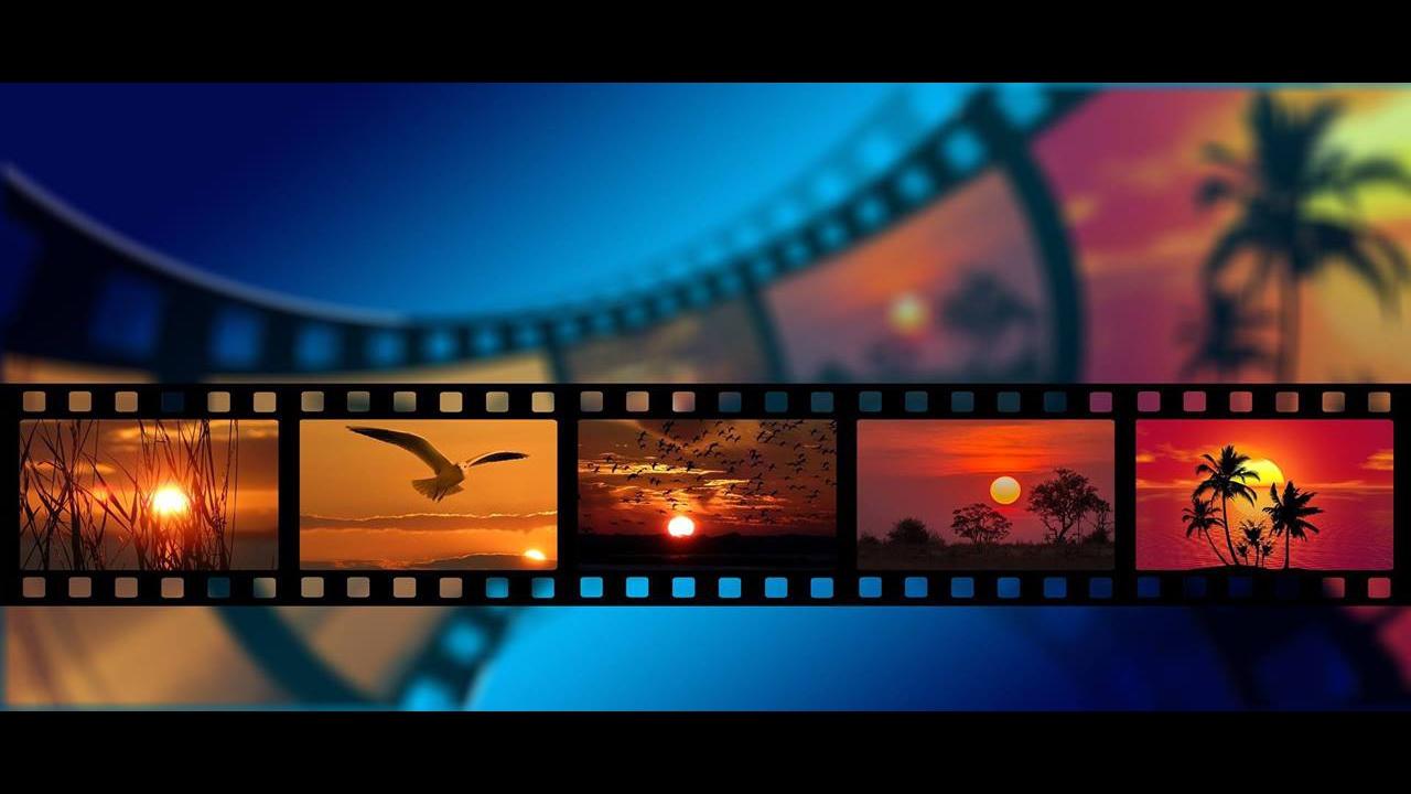 Dia 19 de Agosto é Dia Mundial da Fotografia