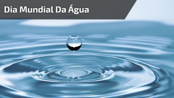Dia 22 De Março É Dia Mundial Da Água - Ela É Tudo Para Nossa Vida!