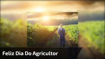 Dia 28 De Julho É Dia Do Agricultor, Parabéns A Todos Desta Área!