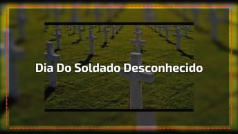 Dia 28 De Novembro É Dia Do Soldado Desconhecido, Comemore Este Dia!