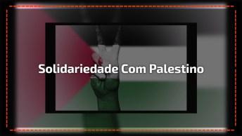 Dia 29 De Novembro É Dia Internacional Da Solidariedade Com Povo Palestino!