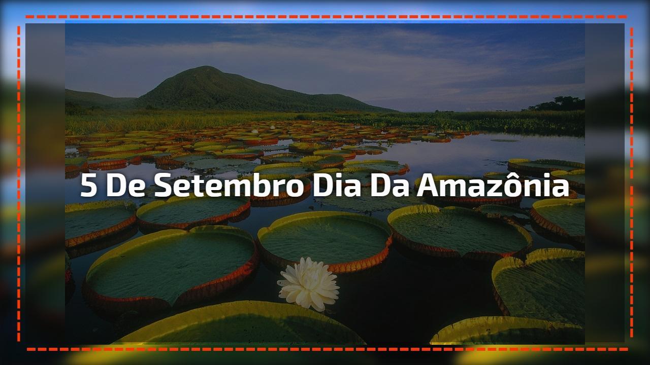 5 de Setembro Dia da Amazônia