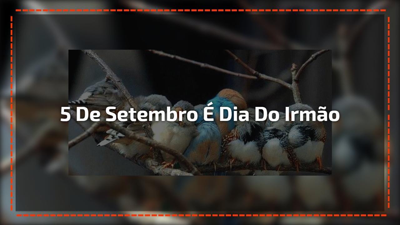 """Dia 5 de Setembro é Dia do Irmão - O """"nosso semelhante""""!"""