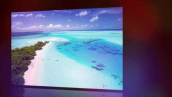 Dia 8 De Junho É Dia Mundial Dos Oceanos - Compartilhe Esse Vídeo Informativo!