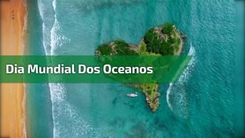 Dia 8 De Junho É Dia Mundial Dos Oceanos - Vamos Nos Conscientizar!