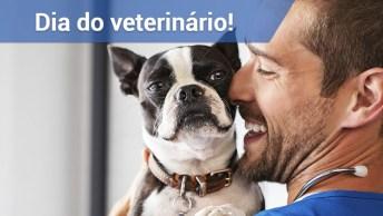 Dia 9 De Setembro Dia Do Veterinário, Parabéns!