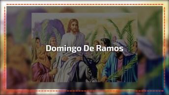 Domingo De Ramos De 2018 É Dia 25 De Março, Entenda O Que Essa Data Representa!