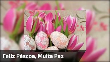 Feliz Páscoa, Muita Paz E Esperança Para Você! Deus Abençoe Este Dia!