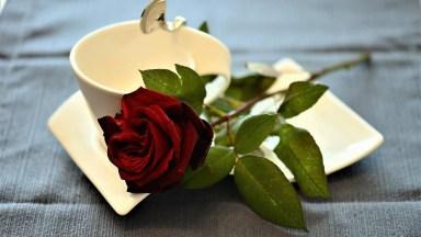 Mensagem De Bom Dia Para O Amor Da Minha Vida, Feliz Dia Dos Namorados!