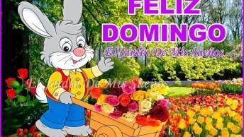 Mensagem De Domingo Para Whatsapp, Com Muitas Flores E Um Dia Feliz!