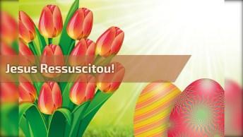 Feliz Domingo De Páscoa, Jesus Ressuscitou, Hoje É Dia De Esperança!