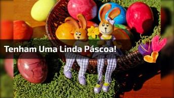 Mensagem De Feliz Pascoa Para Enviar A Todos Amigos E Amigas!