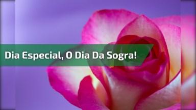 Mensagem De Nora Para Sogra - Dia 28 De Abril É Dia Da Sogra!