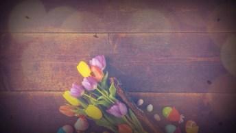 Mensagem De Páscoa Evangélica - Conceda-Me A Graça De Ser Menos Egoísta!