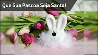 Mensagem De Páscoa. Que Sua Pascoa Seja Santa E Cheia De Gratidão A Deus!
