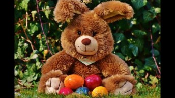 Mensagem Para Desejar Uma Feliz Páscoa - Este É O Momento Ideal!