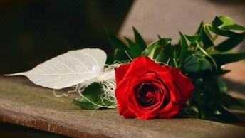 Mensagem Para Dia Dos Namorados Para Facebook - Vim Me Declarar A Você!