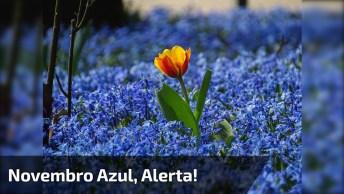 Novembro Azul, Mês Do Alerta Para Os Homens Contra Câncer De Próstata!