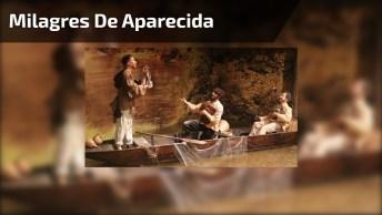 Os Primeiros Milagres De Nossa Senhora Aparecida, A Padroeira Do Brasil!