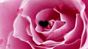 Outubro Rosa, Faça Parte Dessa Campanha Você Também, Compartilhe!