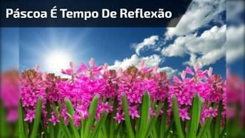 Páscoa É Tempo De Reflexão - Uma Linda Mensagem Para Compartilhar!