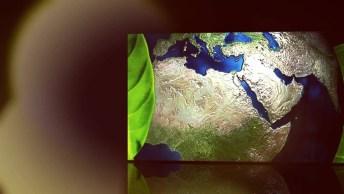 Semana Mundial Do Meio Ambiente Começa Dia 1 De Junho, Compartilhe!
