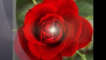 Vídeo Com Mensagem Para O Dia Dos Namorados, Você É O Amor Da Minha Vida!