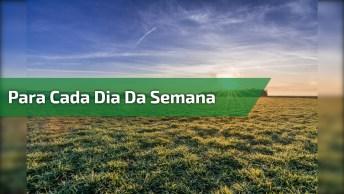 Vídeo Com Mensagens Para Cada Dia Da Semana, Linda Semana A Todos!