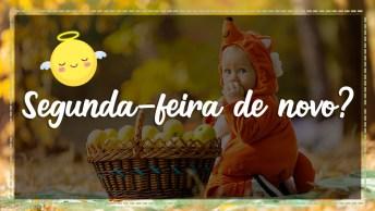 Vídeo Para Segunda-Feira, Envie Pelo Whatsapp De Seus Amigos!