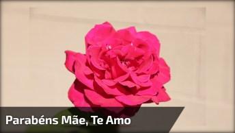 Mensagem De Aniversário Mãe Minha Rainha, Te Amo Eternamente!