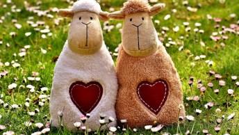 Mensagem De Aniversário Queria Amiga! Que Seu Dia Seja Cheio De Amor!