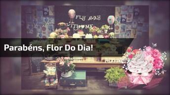 Parabéns Pelo Seu Dia, Flor Do Dia, Uma Linda Mensagem De Aniversário!