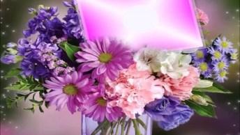 Vídeo De Feliz Aniversário Para Amiga! Te Desejo Toda Felicidade Do Mundo!