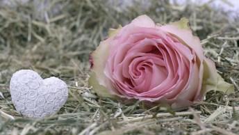 Mensagem De Ano Novo Para Namorada, Que Este Ano Te Reserve Apenas Coisas Boas!