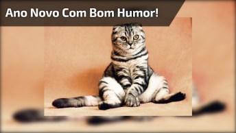 Mensagem De Feliz Ano Novo Bem Humorada, É Sempre Bom Levar A Vida Com Humor!