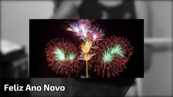 Musica Para Desejar Feliz Ano Novo Para Todos Amigos Especiais, Feliz 2017!