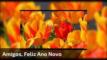 Vídeo Com Mensagem De Feliz Ano Novo Para Compartilhar Com Todos Amigos!