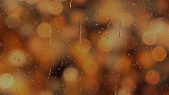 Vídeo Com Mensagem De Feliz Ano Novo Para Família. Tenham Todos Um Abençoado Ano